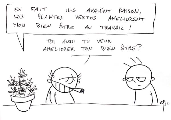 plantes_vertes_bien_etre_travail